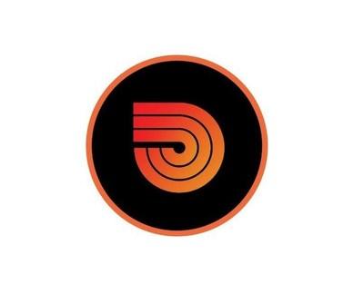 Paladin_Logo